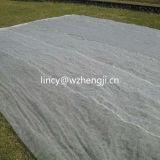 Tessuto non tessuto resistente UV per il coperchio del raccolto di agricoltura