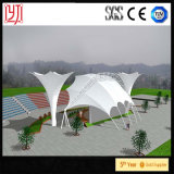 منظر طبيعيّ غشاء معماريّة خيمة بناء [بفدف] سقف تغذية