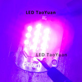 As luzes LED UV no 405nm 25W luzes UV