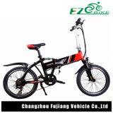 Vélo électrique se pliant avec le pneu de 20 pouces pour Madame