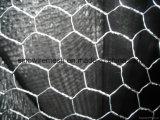 Compensation de fil hexagonale galvanisée pour la compensation de Pourtry avec la qualité