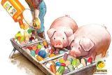 Extracto de Macleaya Cordata para Aditivo Alimentos para Animales