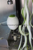 Máquina de descascamento de água mineral de aço inoxidável comercial, Pumkin, Peeler de abacaxi