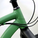 "La SRAM NX 1*11 26"" de la vitesse de la neige en alliage de vélo de montagne Vélo de pneus /FAT (FAT6)"