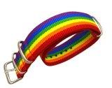 Высокое качество сети ремешок для Apple Watchband смотреть 1/2 серии 18мм 20мм мужчин/женщин Лгбт Rainbow красочные смотреть Band-дель-Reloj