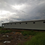 Qingdao Superherdsman Prefabricated 가금 농장 건축