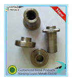 En acier inoxydable ou acier personnalisée de l'usinage pour l'industrie générale
