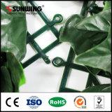 UV por mayor puntuación Green vertical en la pared del jardín del plantador