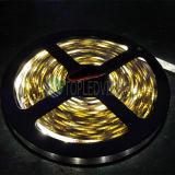 tira de los 60LEDs/M 12V SMD 3528 LED con alta calidad