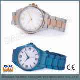 腕時計PVDの真空イオン沈殿陰極アークの蒸発装置