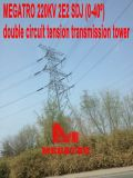 Megatro 220kv 2e2 Sdj Gleichstrom-Belastungs-Energien-Aufsatz