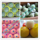 Het Schuim die van de Meloen van de honing de Netto Machine van de Uitdrijving inpakken