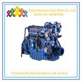 Satisfait pour le gaz du moteur Weichai chariot