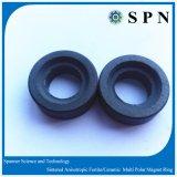 Ring van de Magneet van het ferriet de Permanente Anisotrope voor Motor