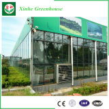 Estufa de vidro moderna para a agricultura