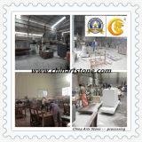 Fabricante chino de la fábrica que procesa el azulejo de mármol Polished de la naturaleza para el hogar