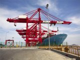 Professional Agente Marítimo no Canadá por portadora: Maersk/CMA/Cosco/Oocl/MSC/EMC