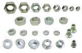 Noix Nuts/spéciales Nuts spéciales d'acier inoxydable de /Custom