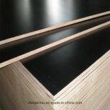 1220*2440 Poplar/Hardwood/Combi les matériaux de construction de base noir/brun