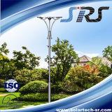 Indicatore luminoso solare del buon giardino di apparenza con CE