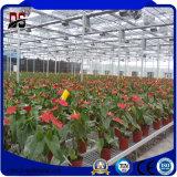 꽃 성장하고 있는을%s Venlo 유형 상업적인 알루미늄 유리제 온실