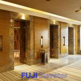 FUJI Passenger Elevator avec Hairline Stainless Steel
