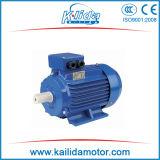 Motore elettrico a tre fasi standard di CA del GOST di IEC (ANP)