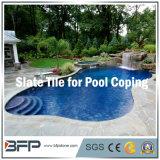 De het het natuurlijke Graniet/Zandsteen/Lei van de Steen voor Zwembad/Pool die/het Omringen van de Pool het hoofd bieden het hoofd bieden