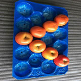 Der Apple-Customed umweltfreundliches pp. Plastikapple Tellersegment Größen-verschiedenen Wegwerffarben-