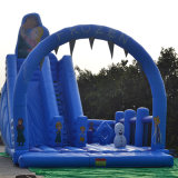 Principessa Inflatable Slide per il partito