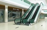 Escalator dell'interno per Shopping Mall