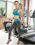 Pantalons de yoga à jogging de fitness à étirage rapide à haute qualité