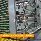 Automatischer heißes BAD galvanisierter Huhn-Batterie-Schicht-Rahmen für Verkauf