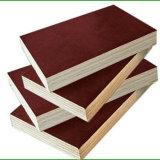 Película de alta calidad contrachapada y madera contrachapada marina