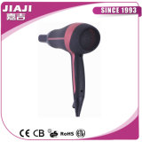 Salone Hair Dryer con Fashion Style