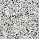 Bush ha martellato la pietra del granito per la pavimentazione esterna della costruzione