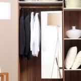 Geöffneter Wandschrank-Entwurf gebildet in China/im Weg in den Garderoben-Möbeln