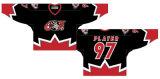 Liga de Hóquei de Ontário personalizados Ottawa 67s 1998-2012 Suplente Hóquei no Gelo Jersey