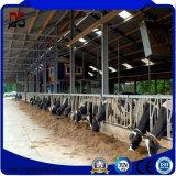 Qualität galvanisierter vorfabrizierter Stahlrahmen für Vieh-Bauernhof-Haus