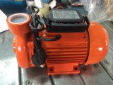 1.5dkm-20 국내 전기 원심 펌프, 수도 펌프 (0.75KW/1HP)