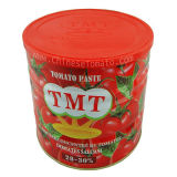 La pâte de tomate fraîche 400g Tin expédition en provenance de Chine
