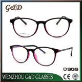 Telaio dell'ottica degli occhiali di Eyewear del blocco per grafici di vetro di modo Tr90 di alta qualità