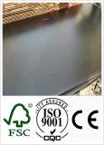 21mm Wood Plywood met Black Film voor Concrete Usages