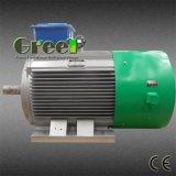 альтернаторы AC 0.5-5000kw низкие Rpm Sychronous для сбывания