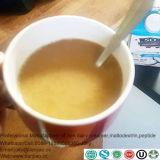 Sostituto del latte intero con latte senza lattosio