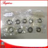 De Pakking van Terex (9053750) voor Terex Kipwagen 3305 3307 Tr50 Tr60