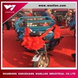 500W de Elektrische Driewieler van de Lading van China voor Volwassenen