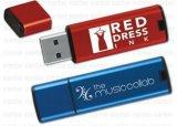 Freies Zeichen gedruckter Plastik-USB-Flash-Speicher (C-32)