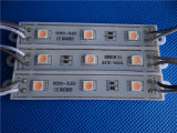 Módulo impermeável energy-saving do diodo emissor de luz IP65 5050