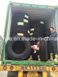 1100r20, 1200r20 모든 Steerl 광선 트럭 타이어